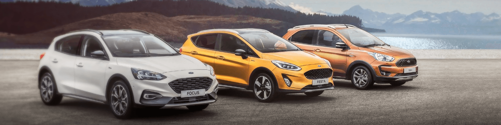 Used 2021 FORD Fiesta Cars for Sale in Meath - CarsIreland.ie